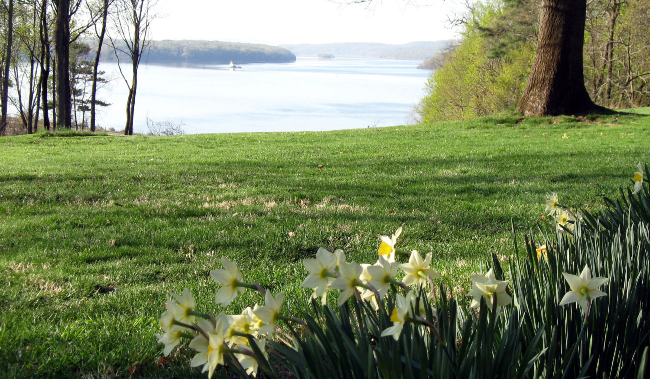 Flowers near the Hudson River on the Grounds & Trails at Wilderstein Historic Site